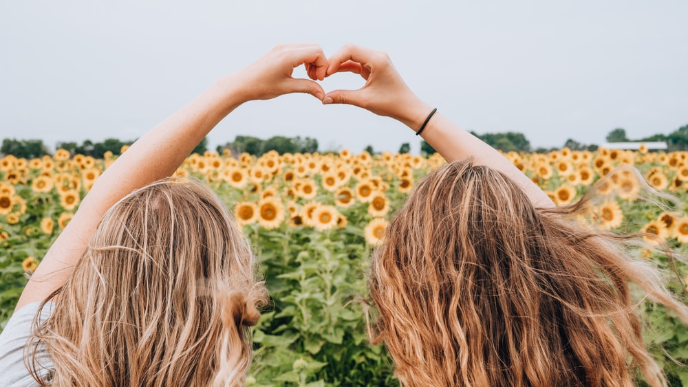 two women forming heart-shape using hands fronting sunflower field during daytime