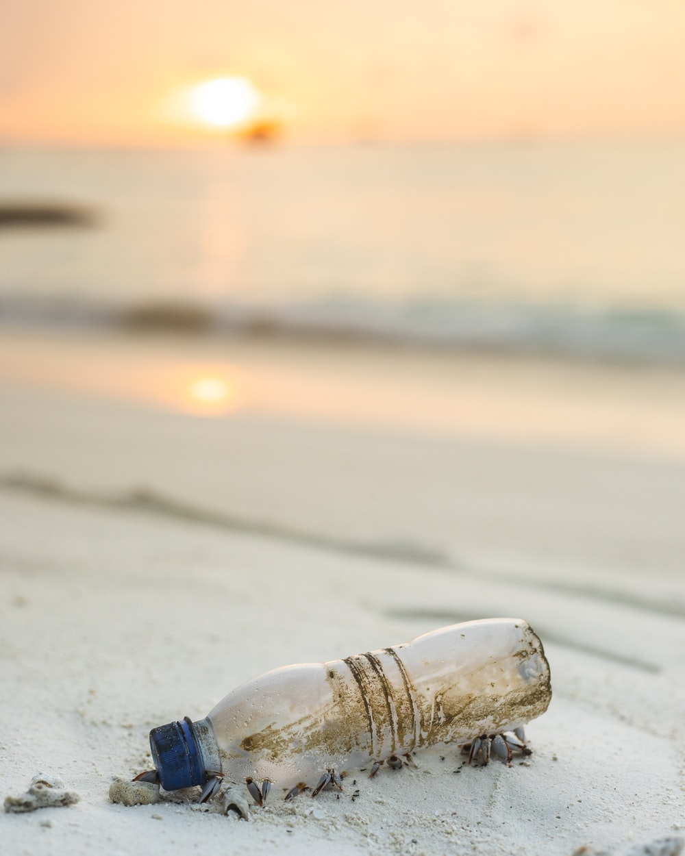 clear plastic bottle beside beach