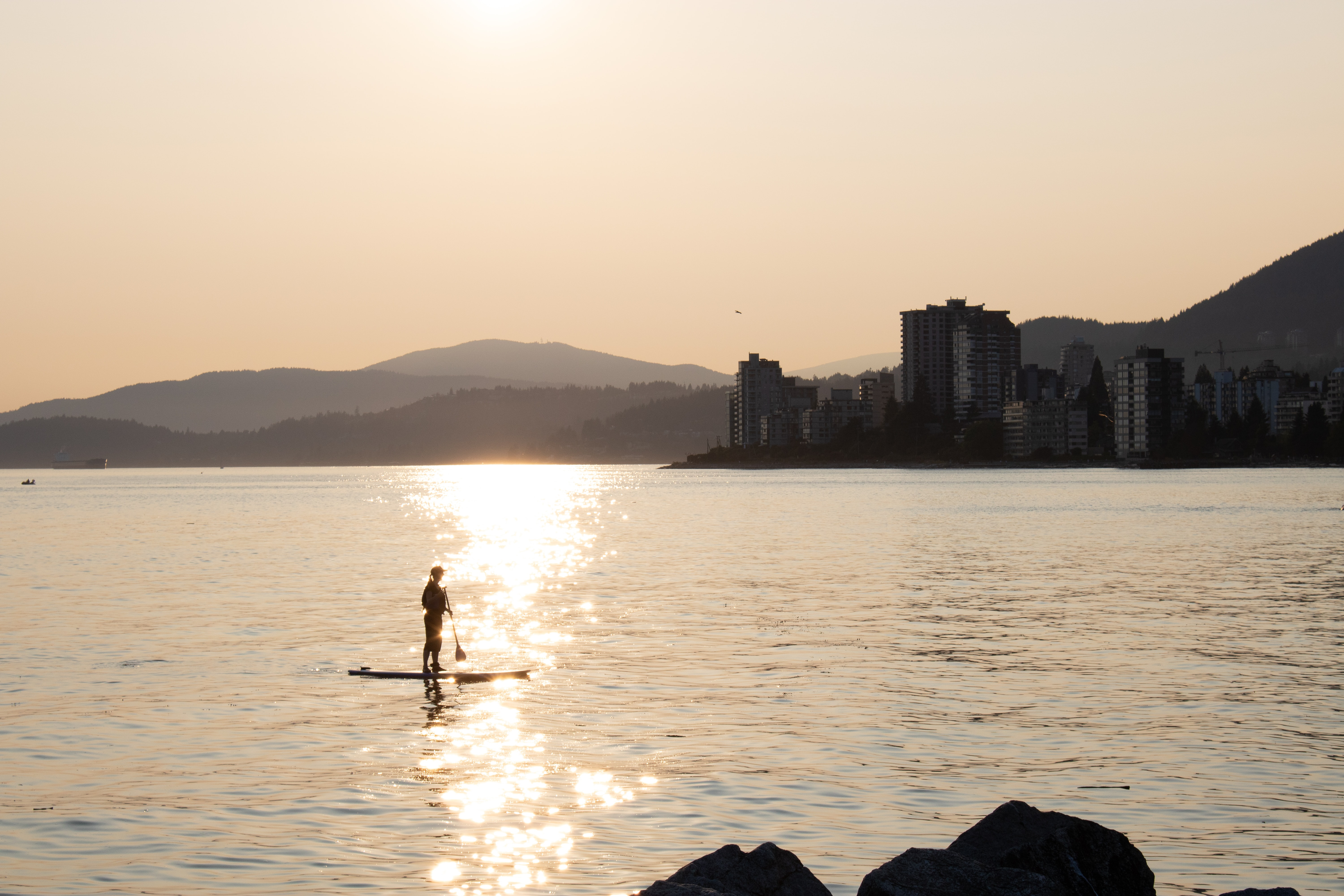 silhouette photo of person holding paddle on body of water