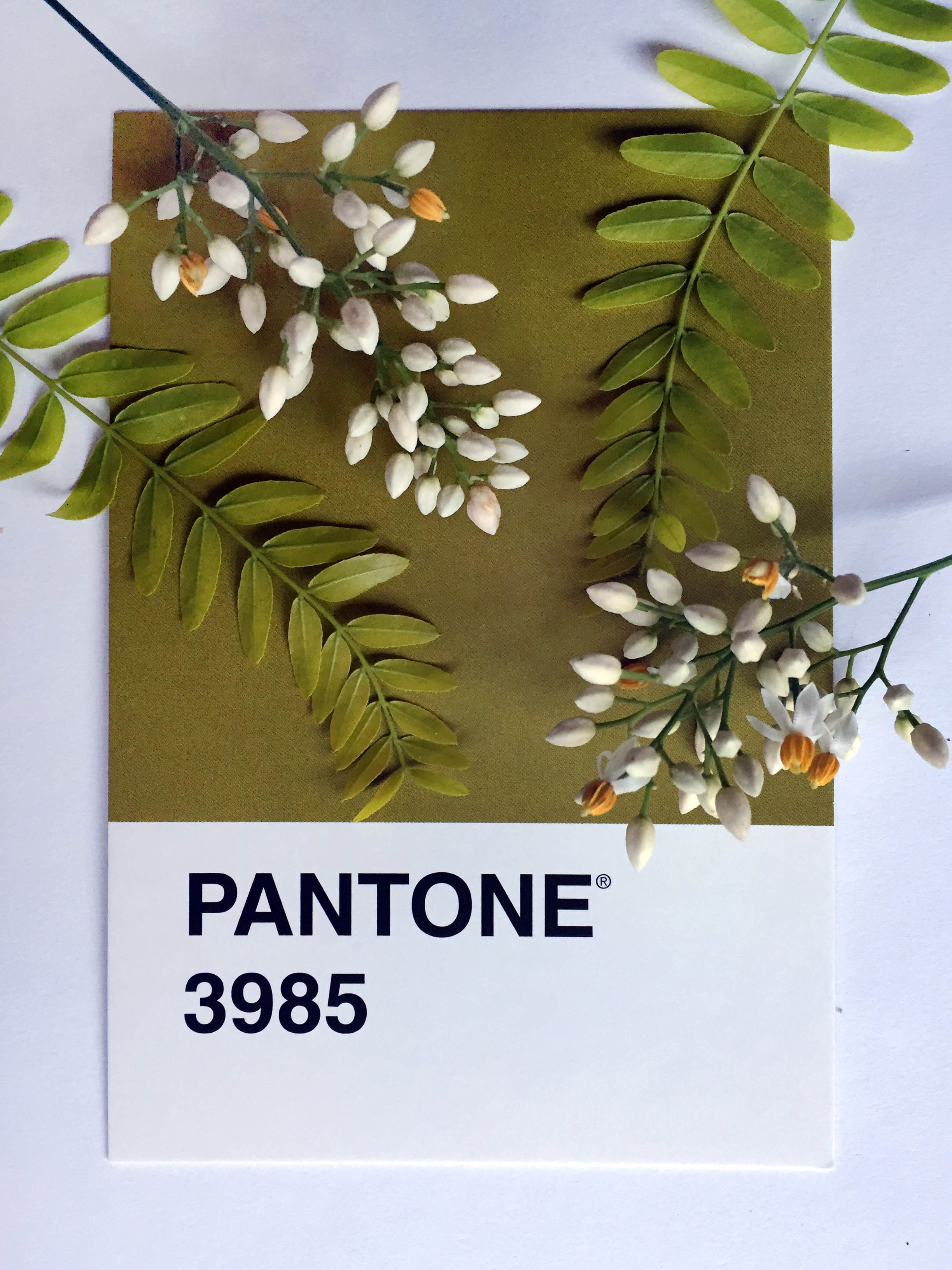 green and white plants on Pantone 3985 poster