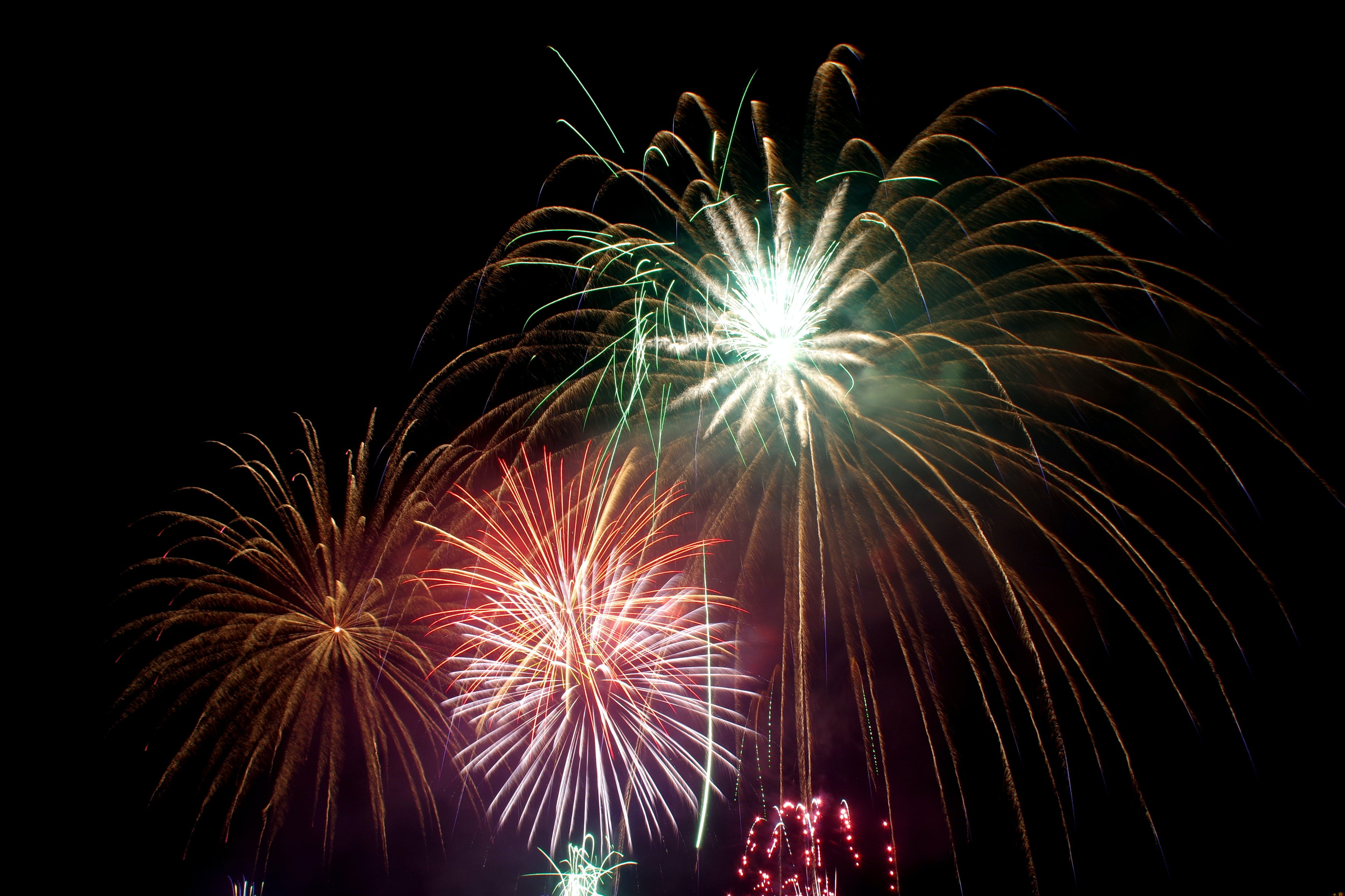 assorted-color fireworks during nighttime