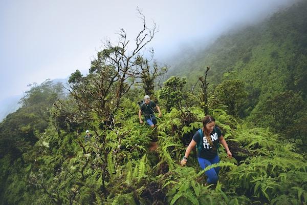 hikers enjoying benefits of hiking