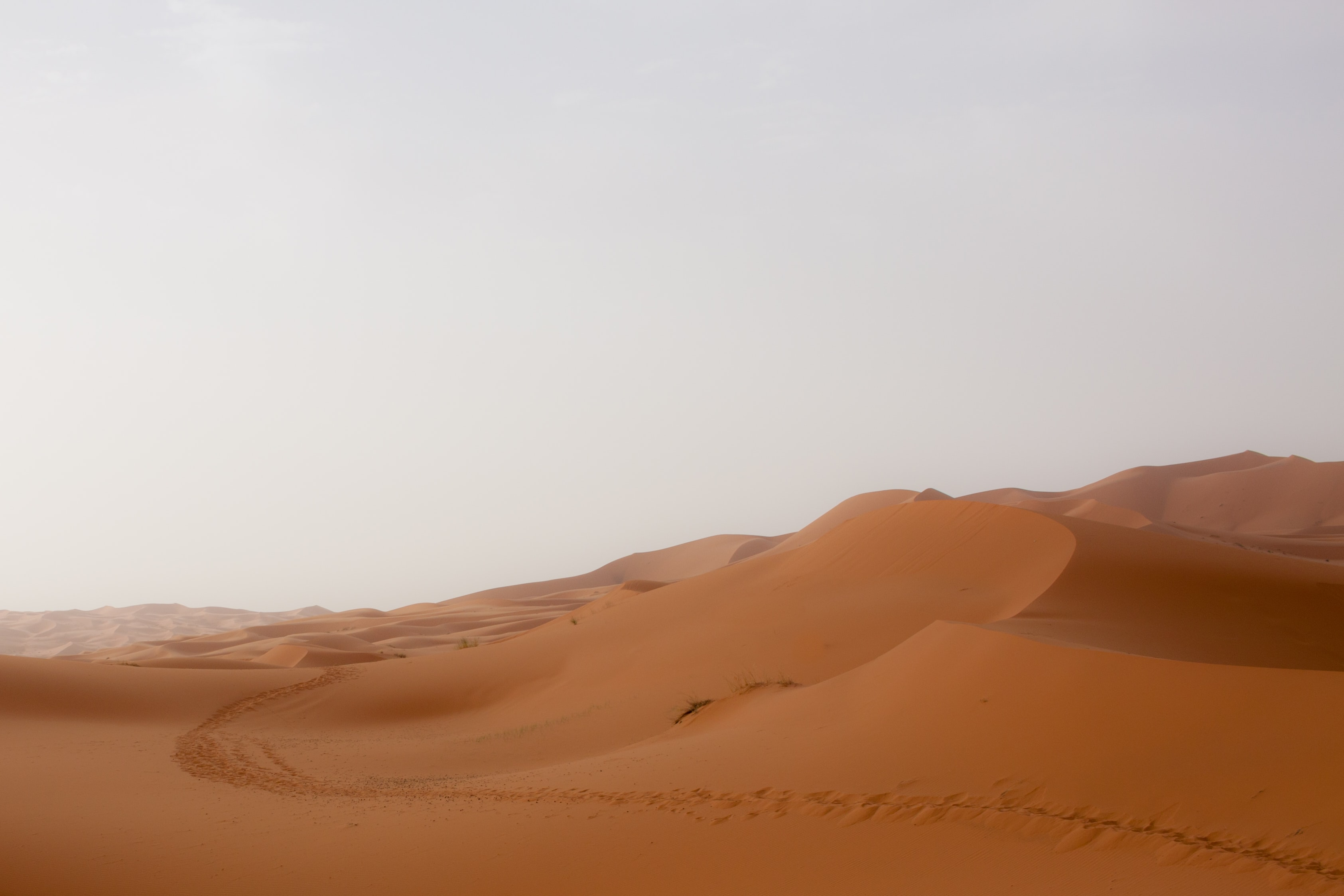 aerial view photography of desert