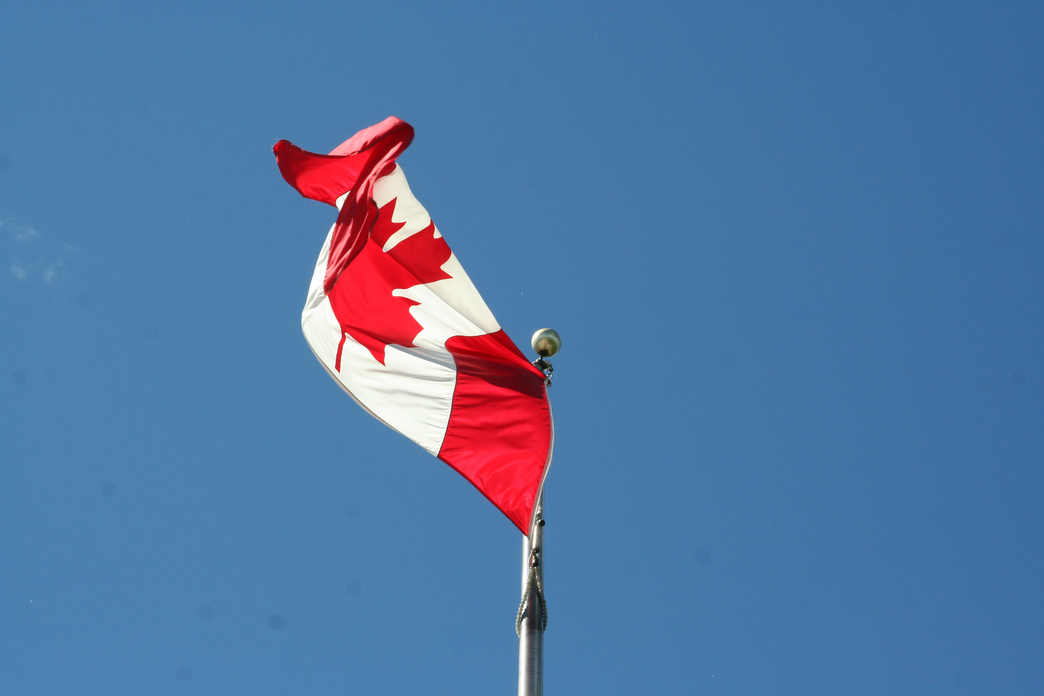 low angle photography of waving flag of Canada during daytime