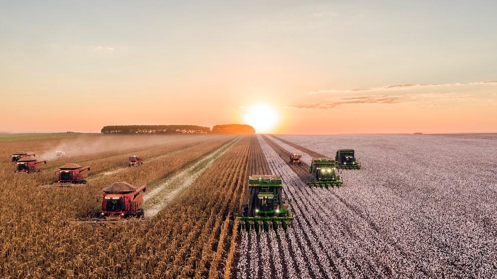 agriculture latin america australian market