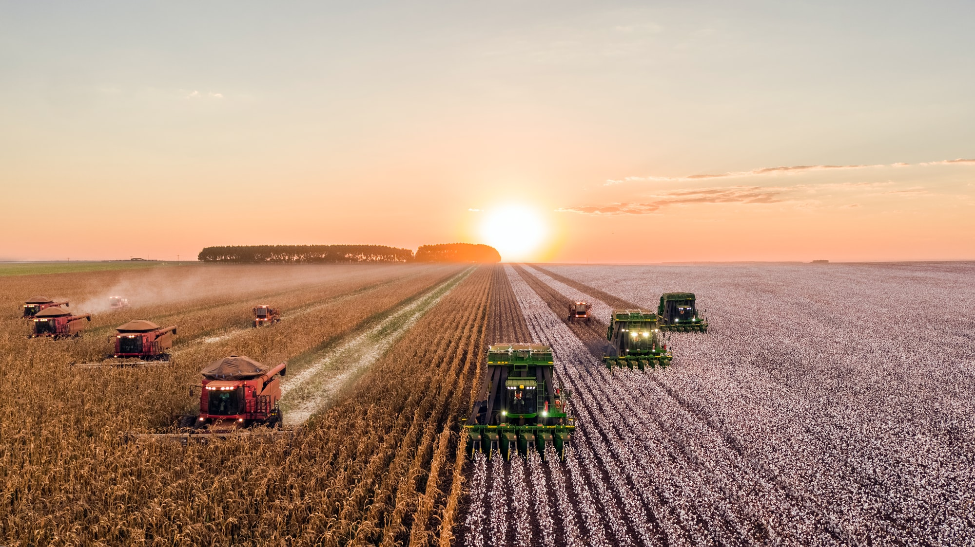 Raising the Temperature on Agricultural Commodities