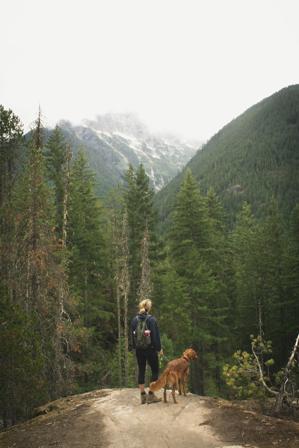 woman with dog standing on edge of cliff facing forest and mountain