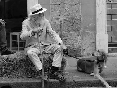 Uomo e animale: chi contagia l'altro?