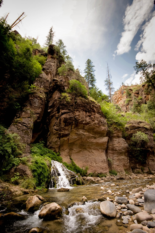 rock formation near green trees