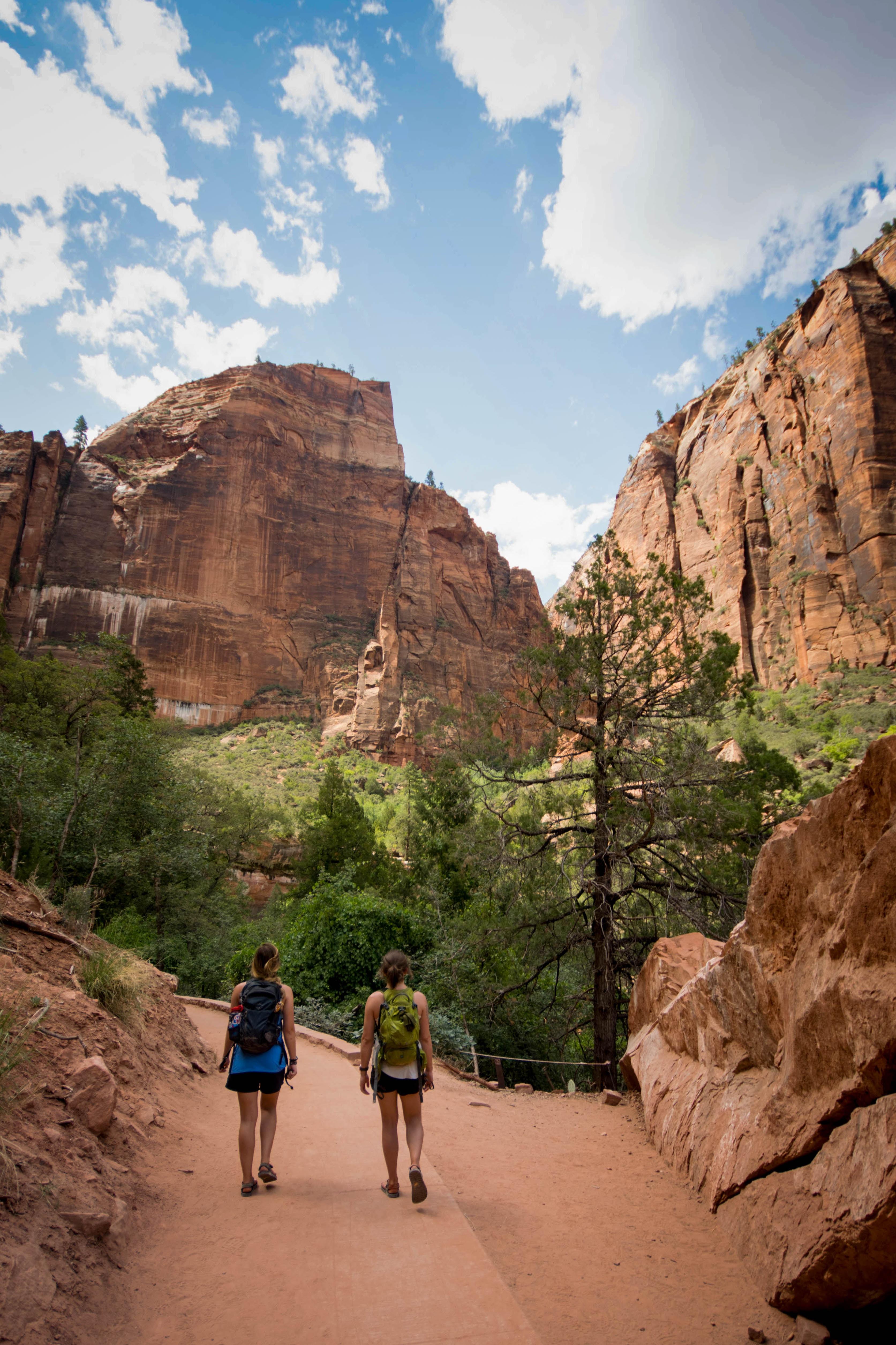 two women walking in front of trees