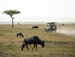 Selous Nationalpark