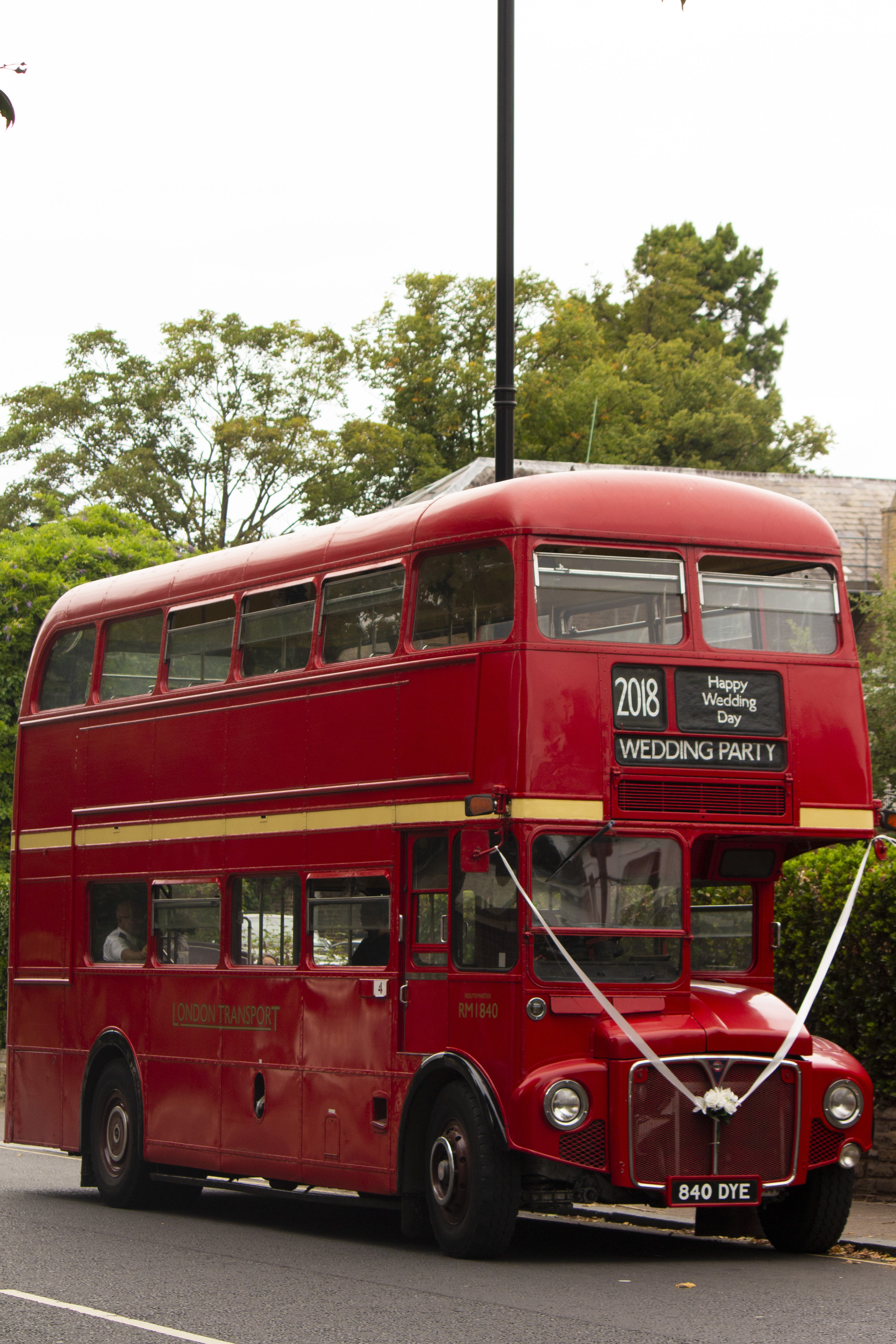 red Wedding Party double decker bus on road near trees and house