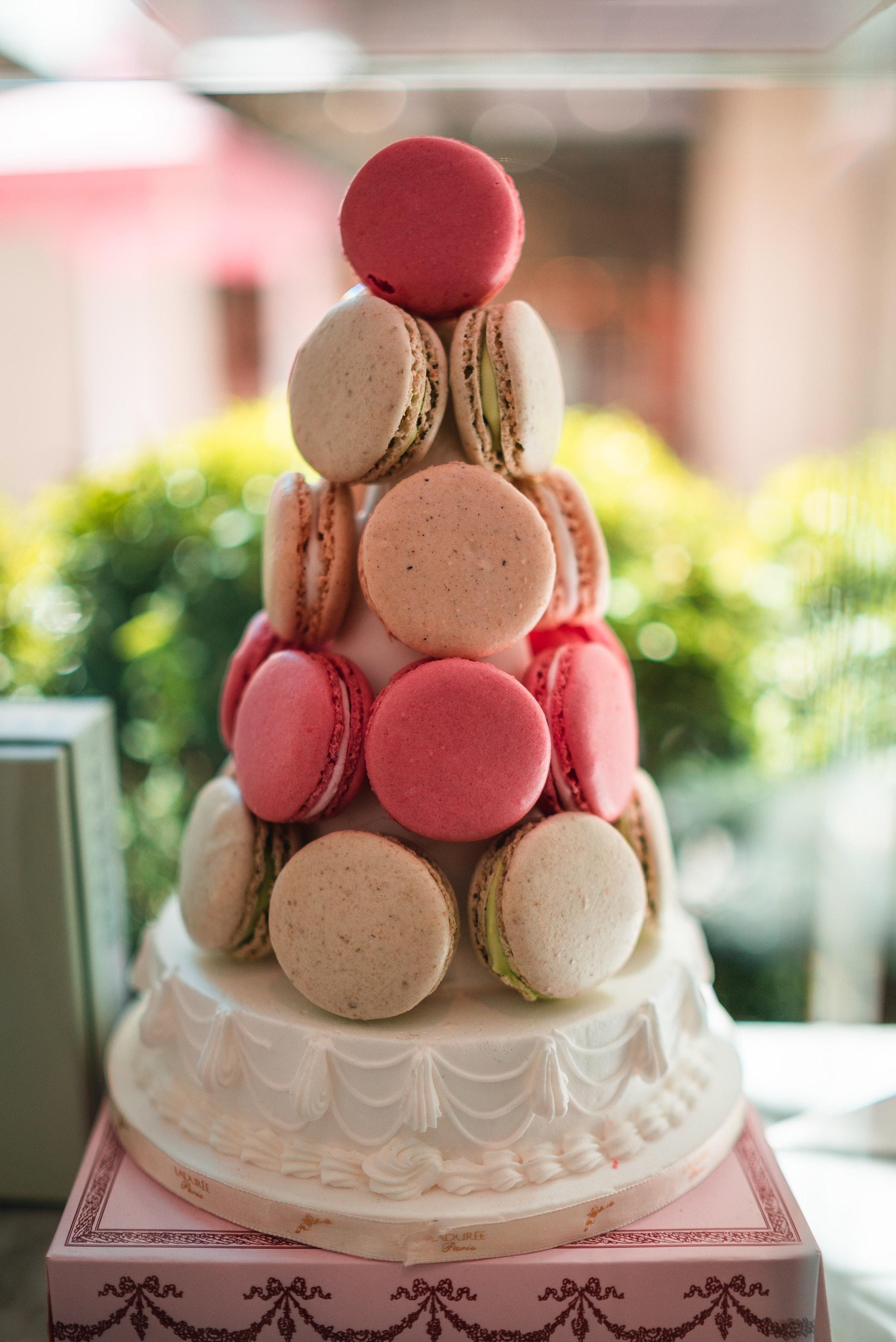 shift-tilt lens photography of French macaroons