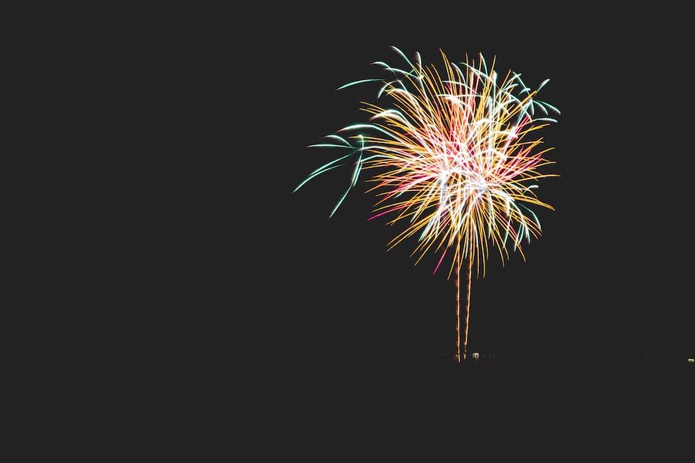 yellow, blue, and red chrysanthemum firework
