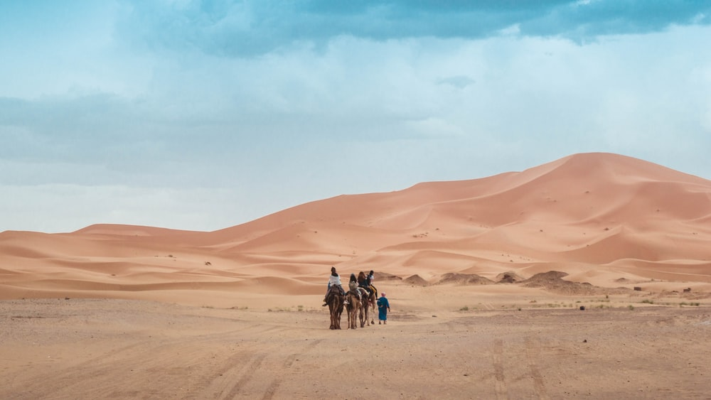 person riding on camel across the desert