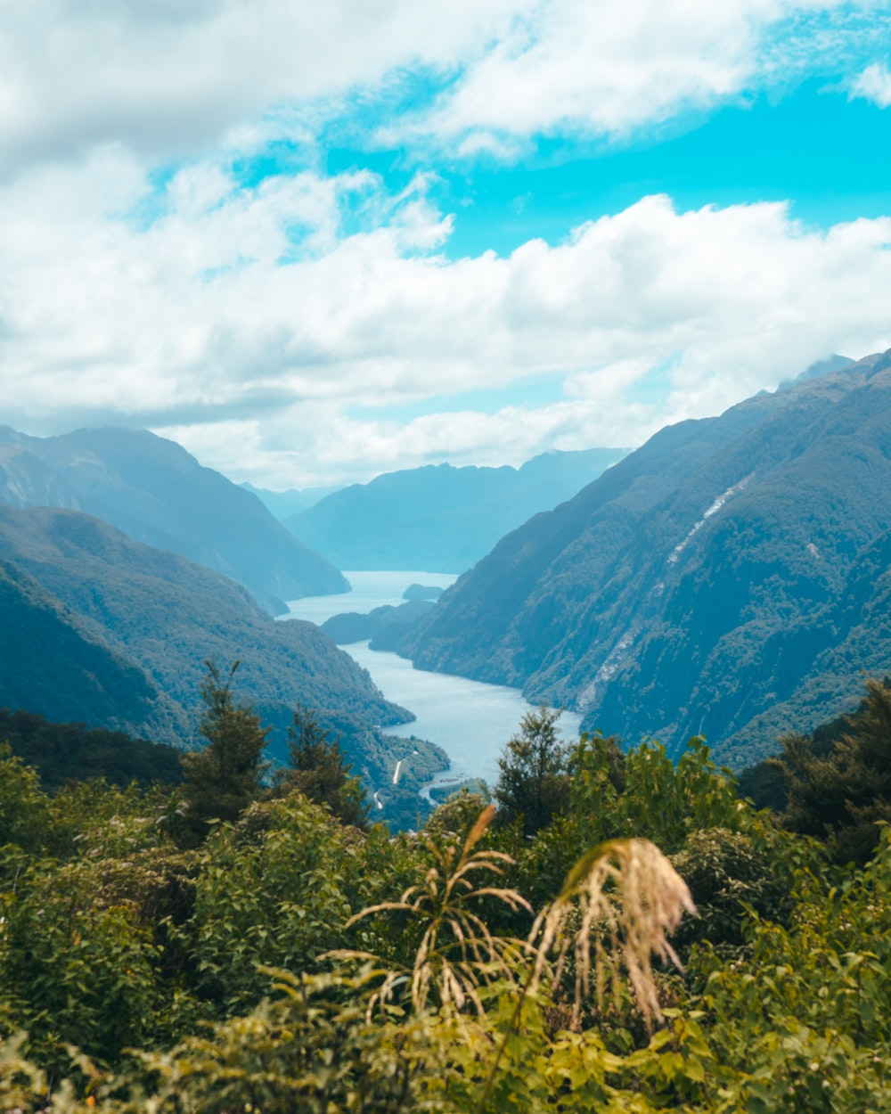 body of water between mountains with trees during daytime