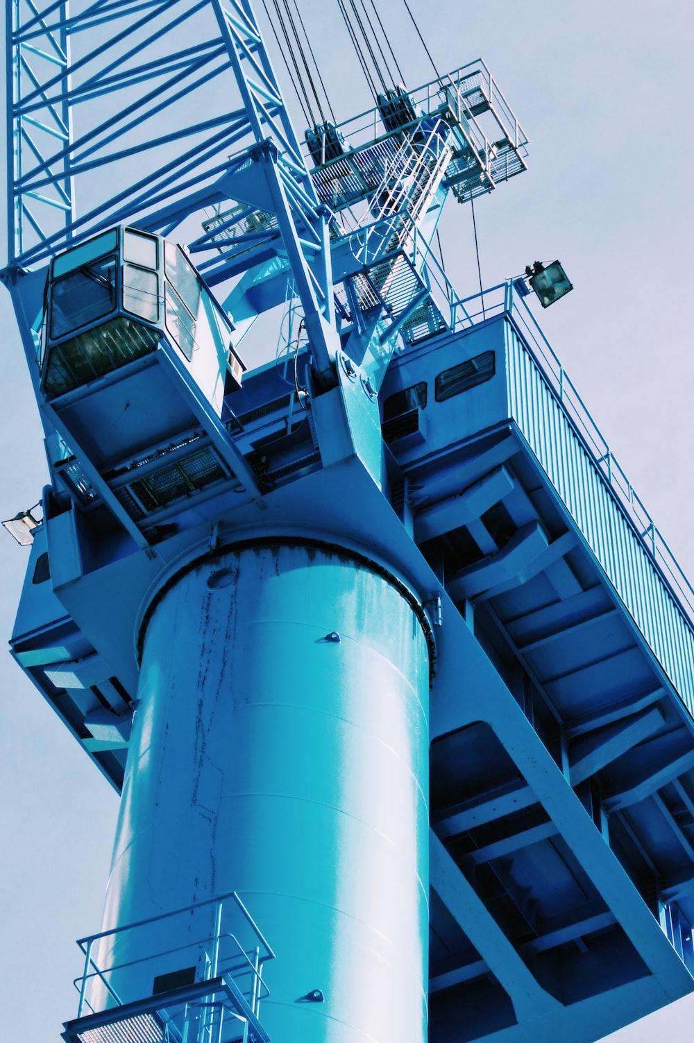 blue crane during daytime