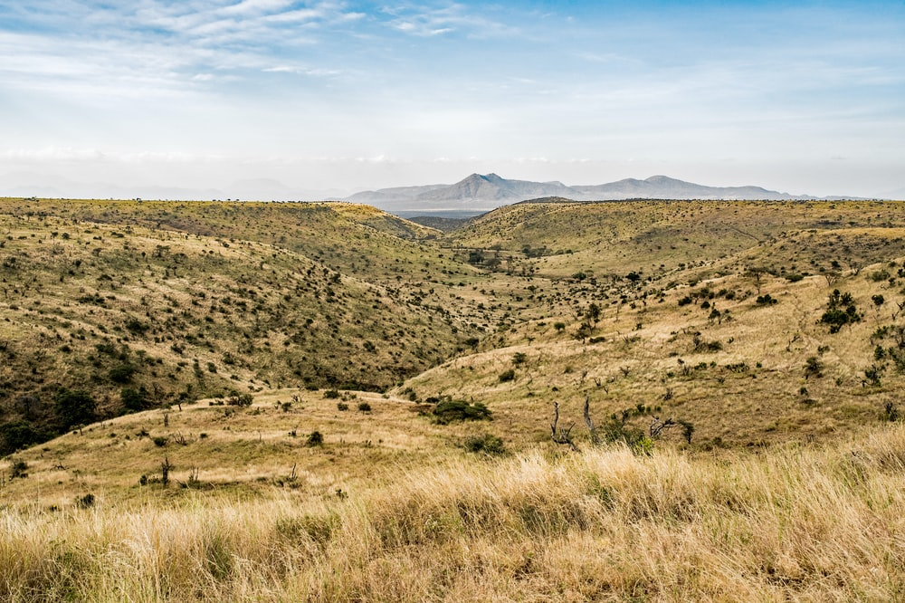 African Landscape Pictures | Download Free Images on Unsplash