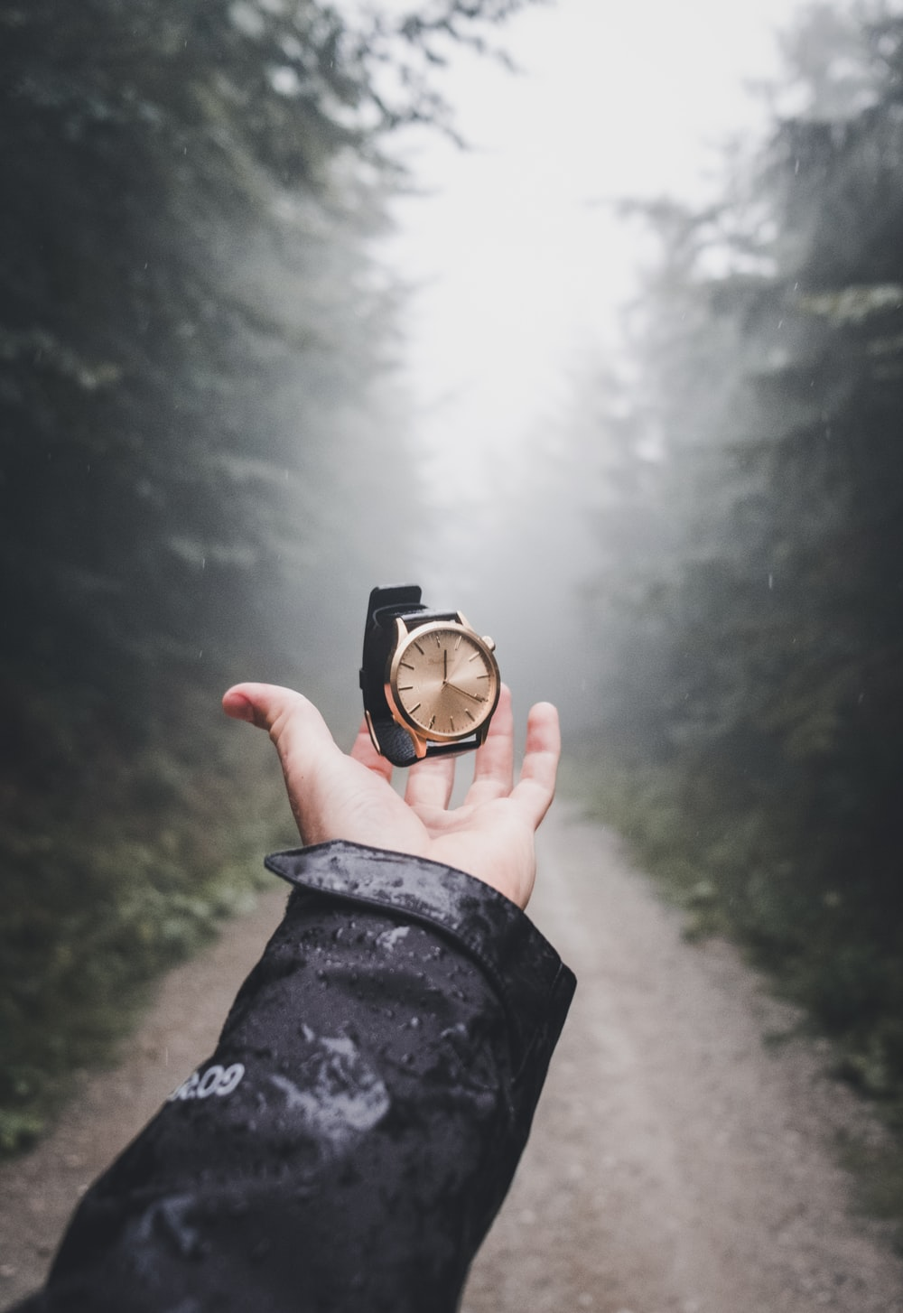 person holding round gold-colored analog watch