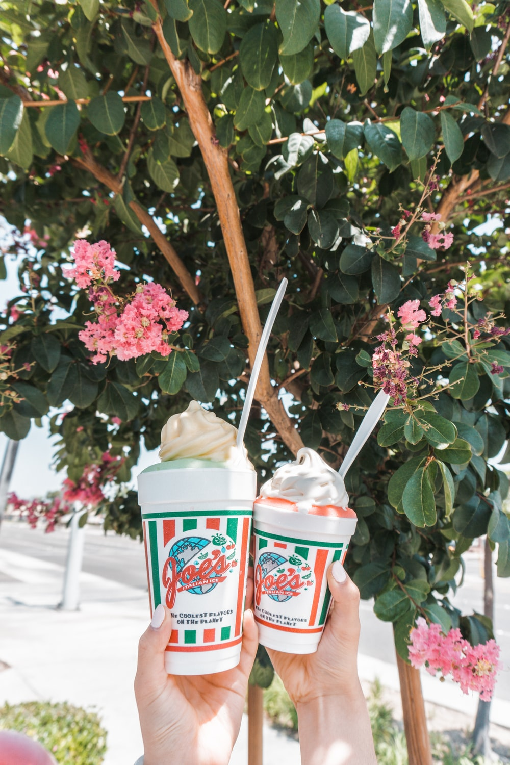 two persons holding Joe's frappes plastic cups near tree