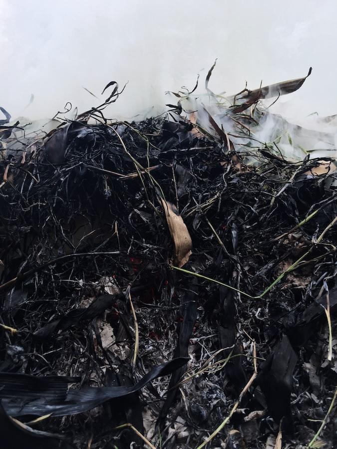 Garden Season Tips: How To Make Organic Fertilizer From Compost