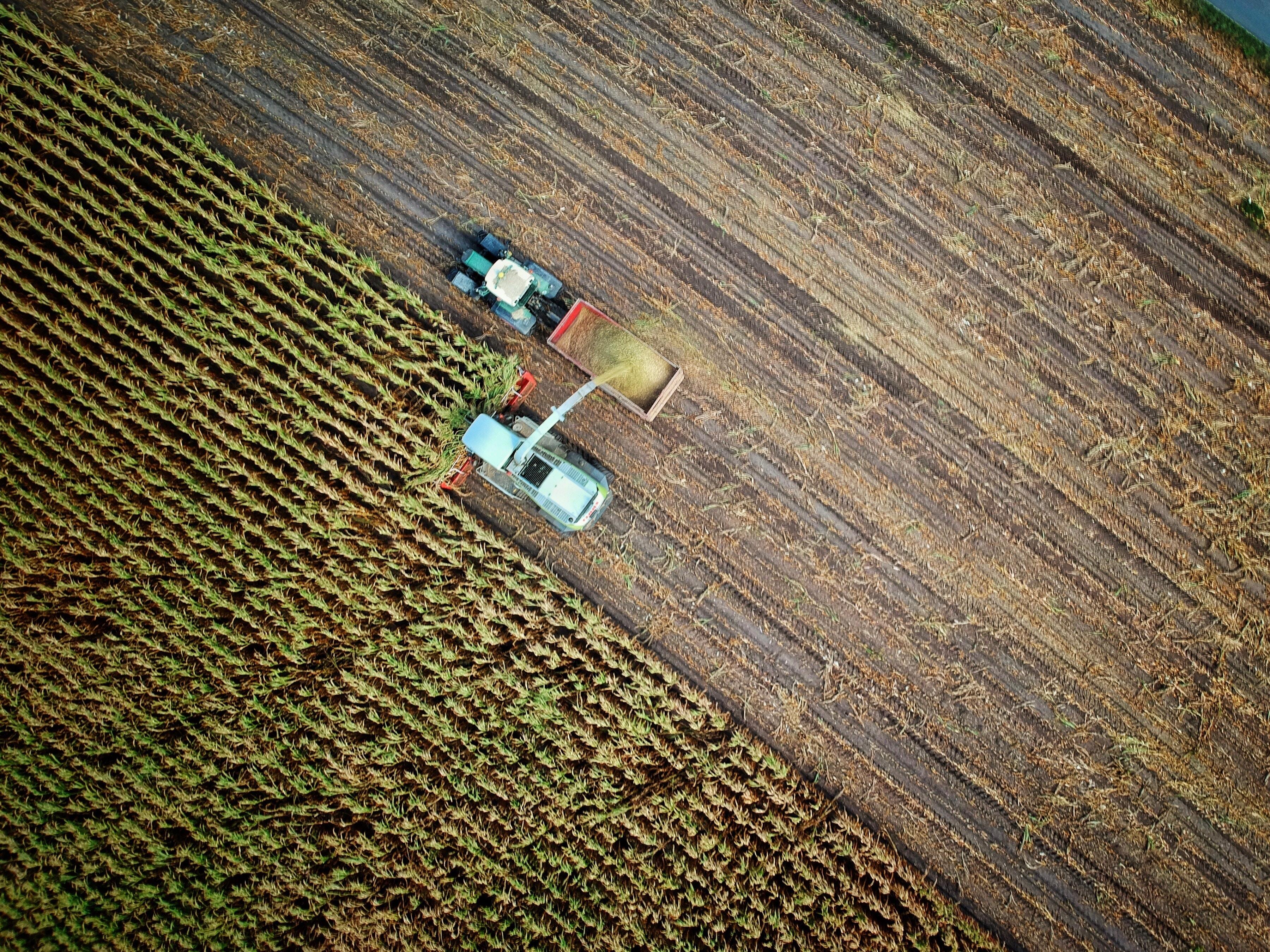 campo trabajado- administración agraria-viaedu
