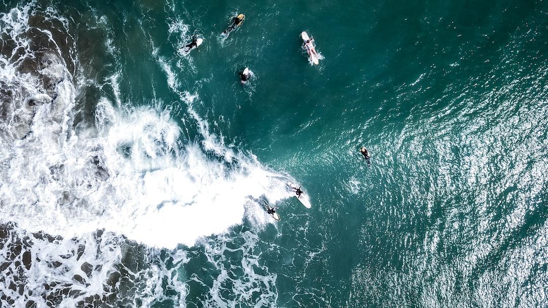 La inmensidad del océano y surfers