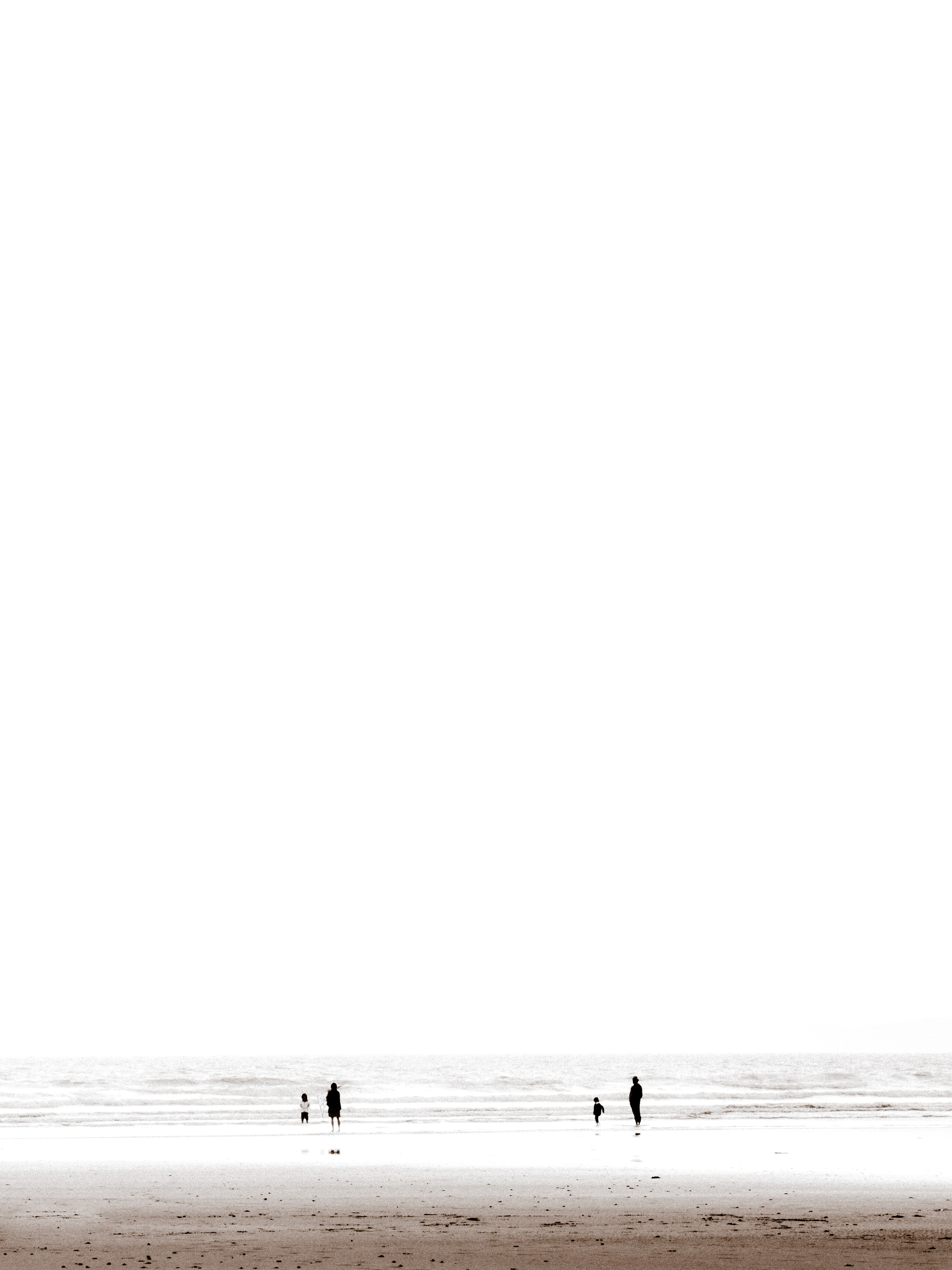 silhouette of people in beach