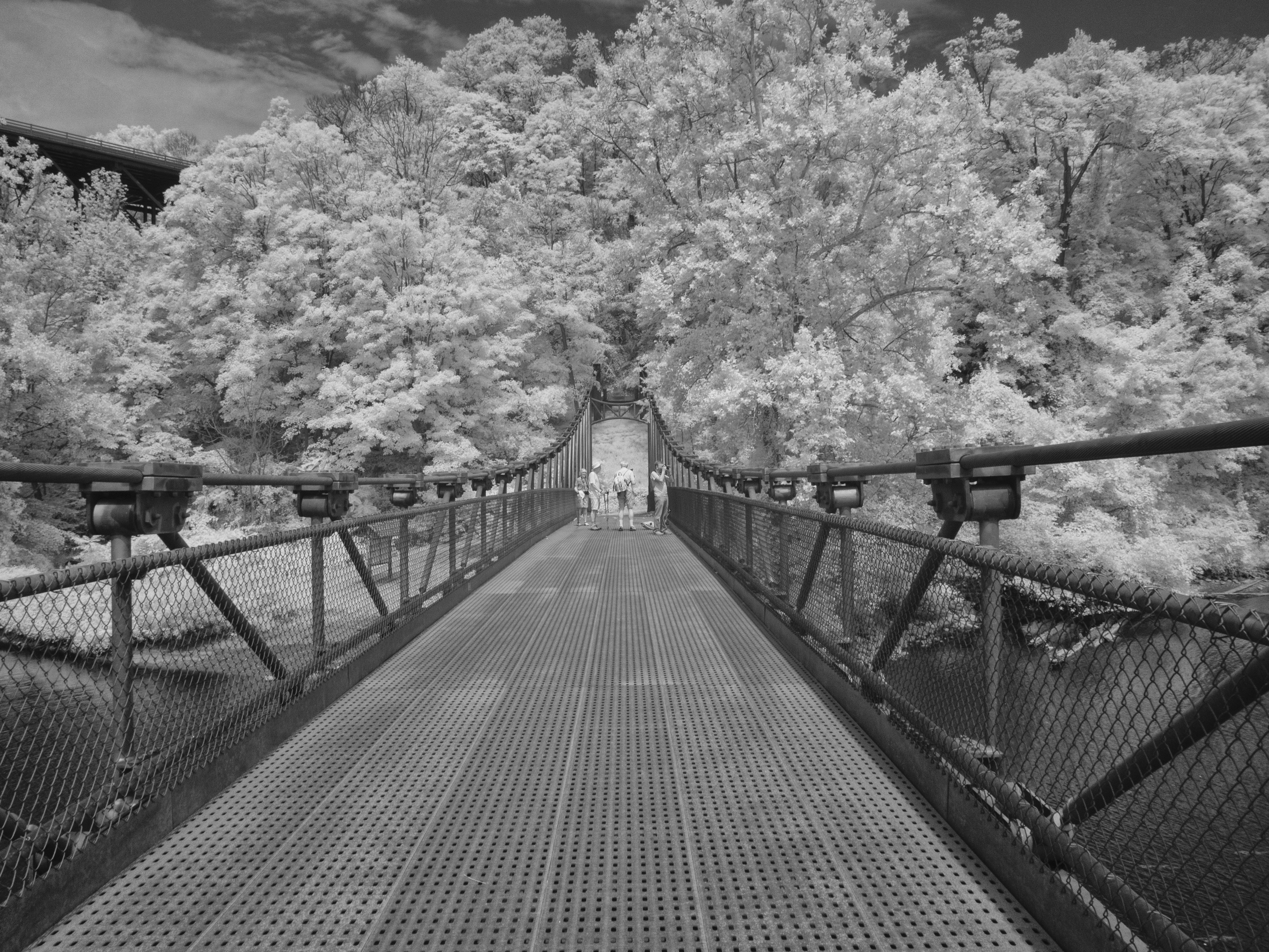 footbridge grayscale photo