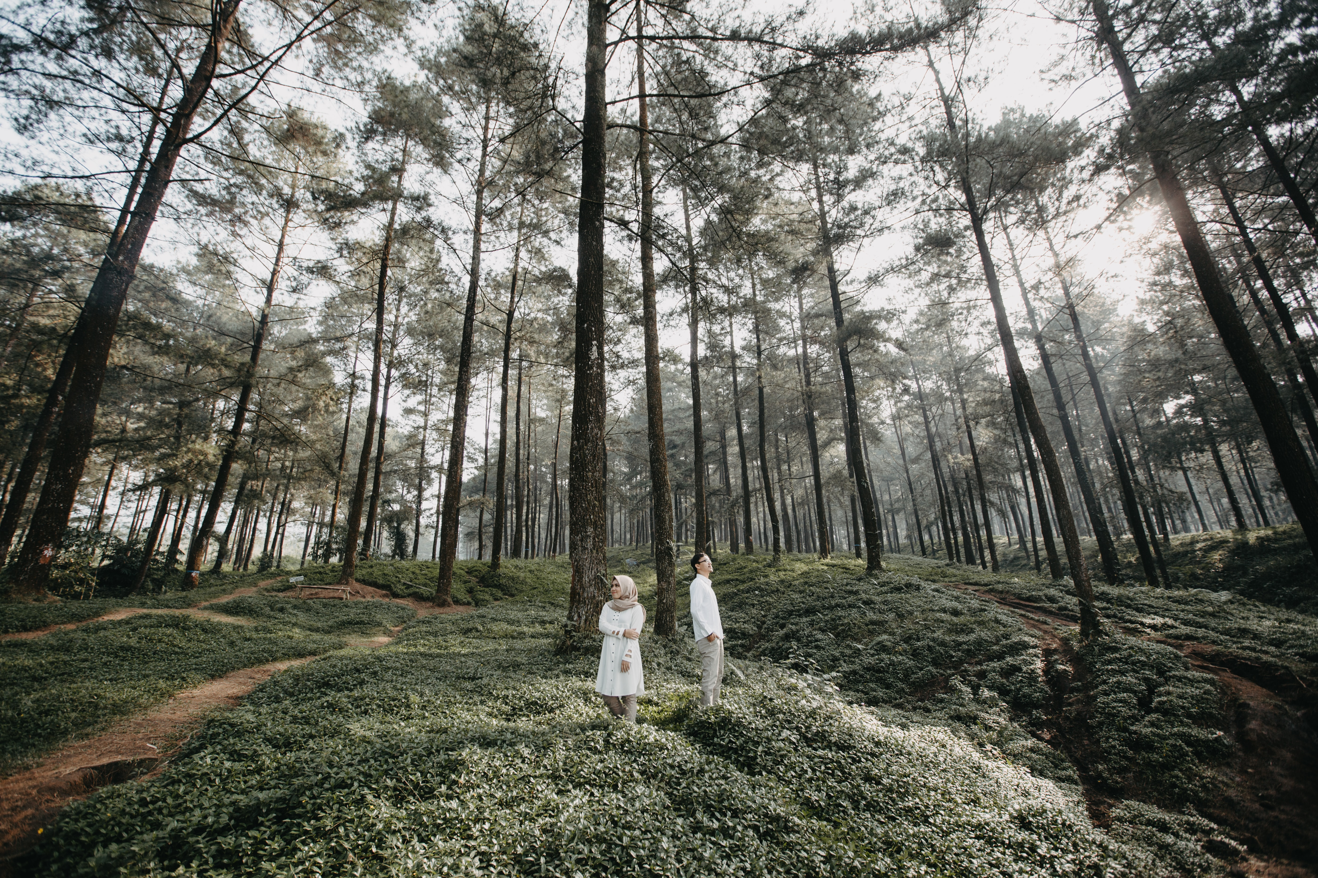 man and woman inside forest