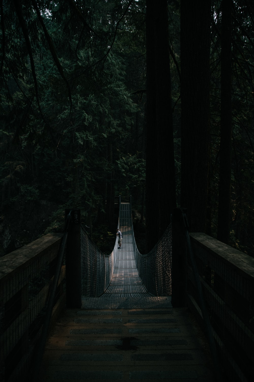 man standing at middle of hanging bridge