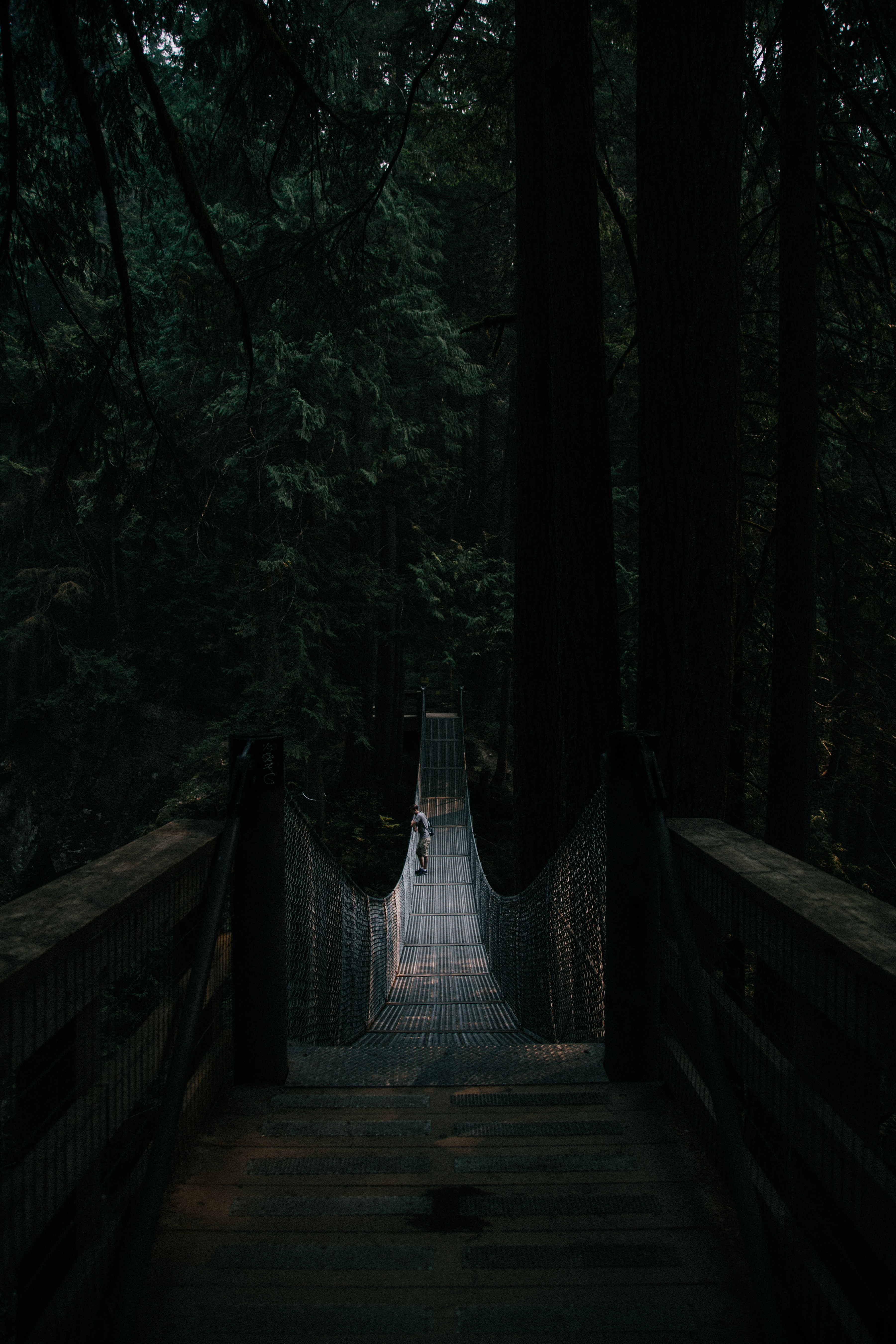 man standing at middle of hanging bridge
