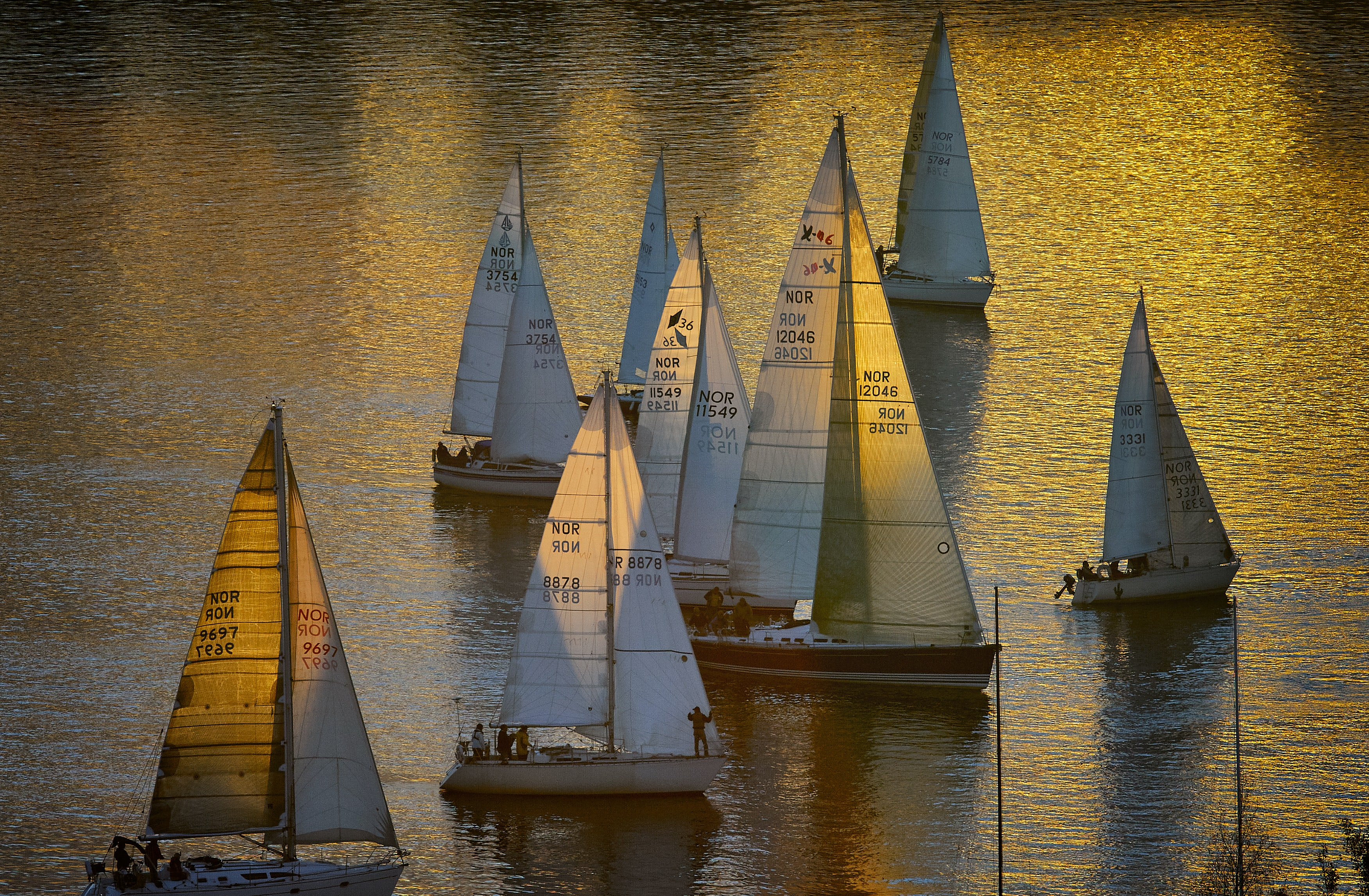 white sailboats on body of water during daytime