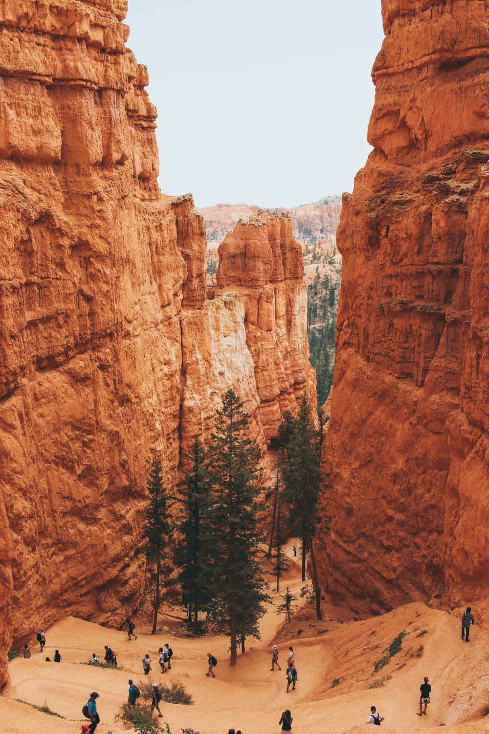 group of people in canyon during daytime