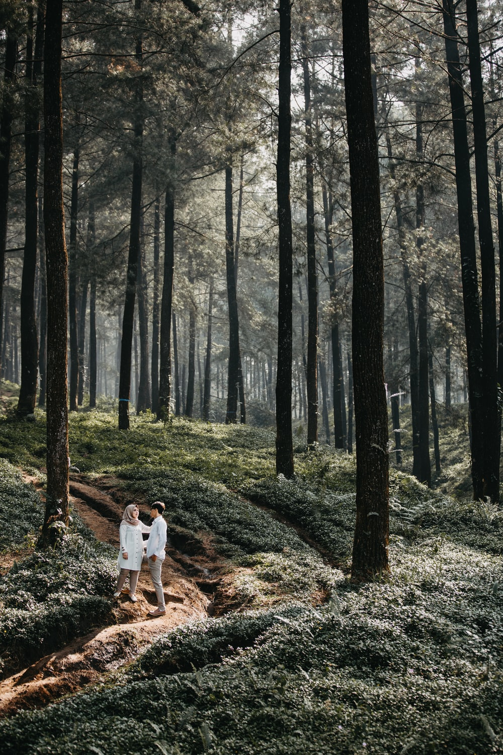 man and woman standing next to each other in a forest with tall trees during daytime