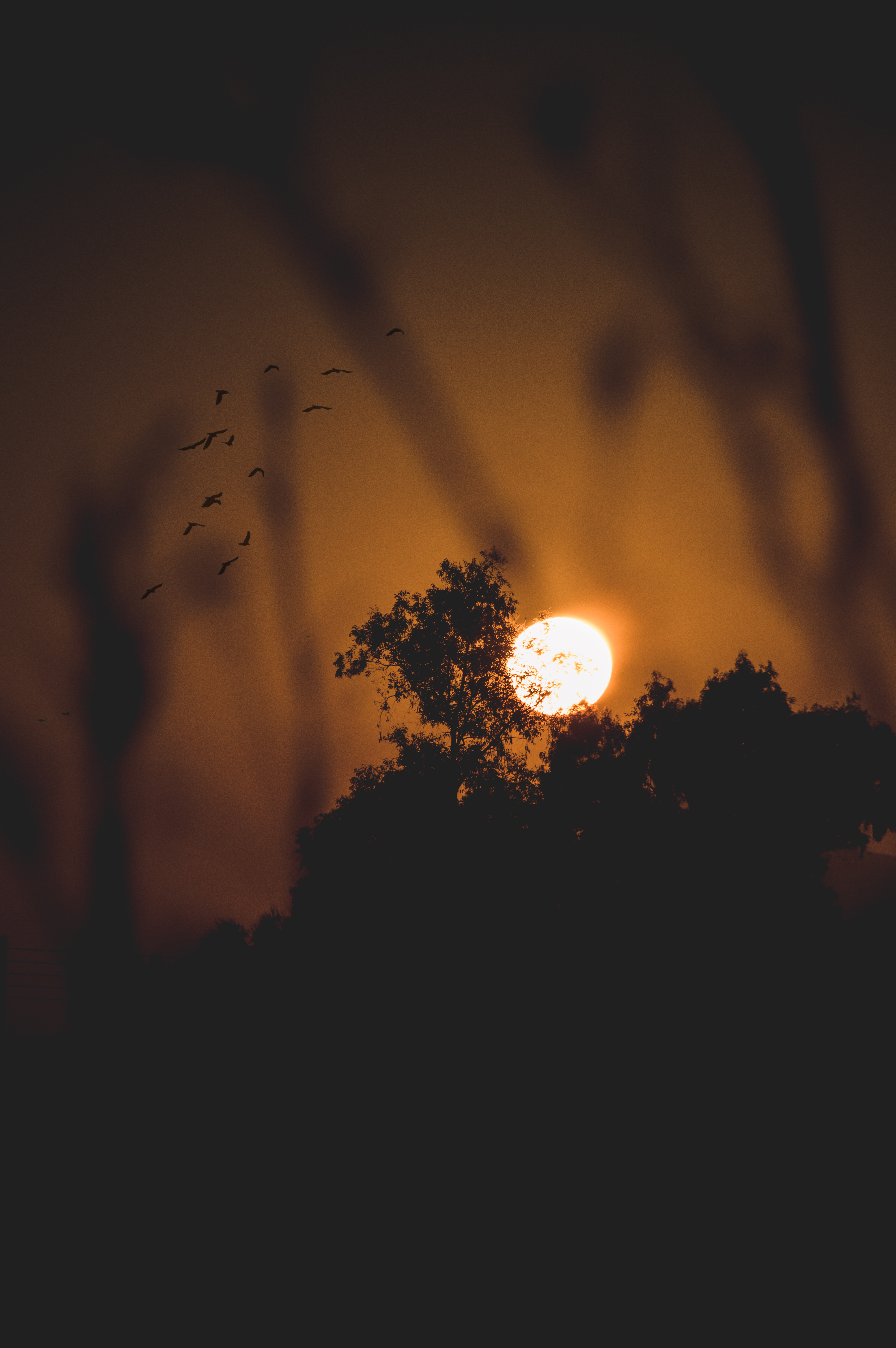 selective focus photography of full moon
