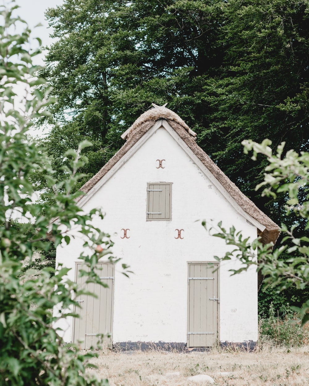 white concrete house surrounded by green leafed trees