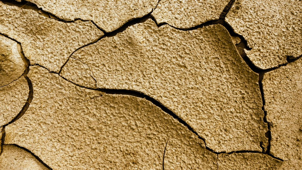 cracked brown pavement