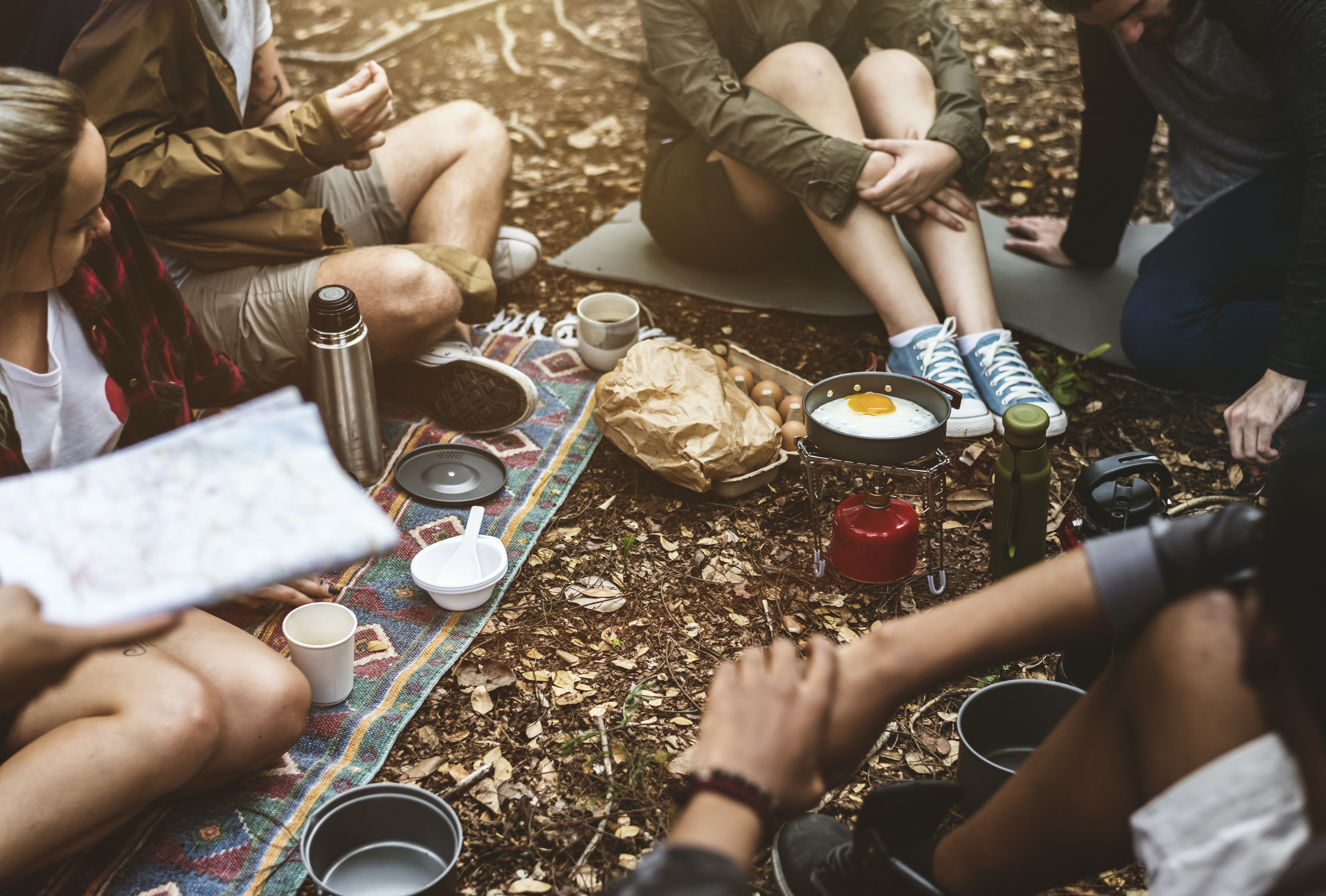 people gathering on a picnic