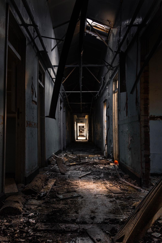 pathway towards door