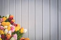 assorted-color flower arrangement near wall