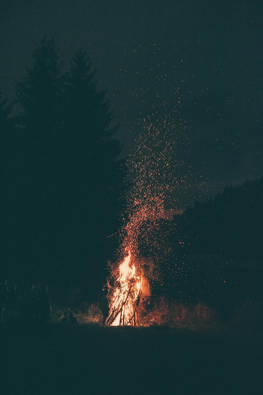 burning wood at night
