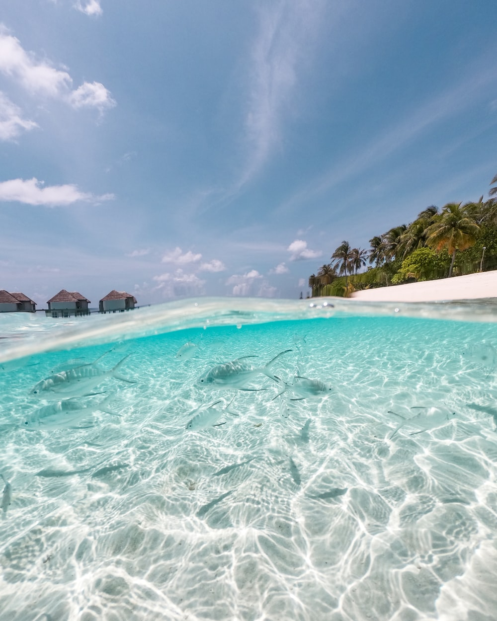 photo of body of water with nipa hut