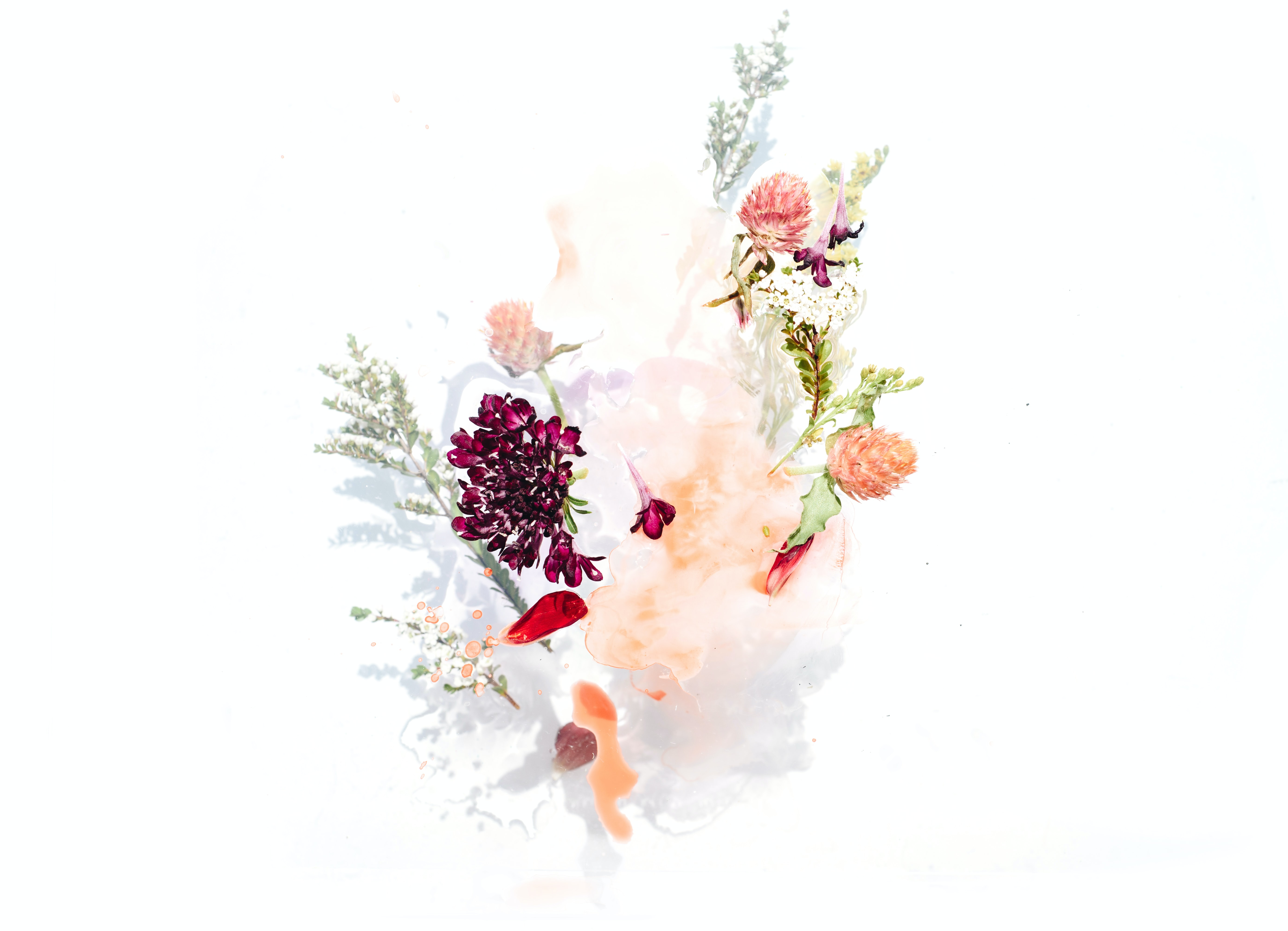bouquet of assorted flowers vector graphic