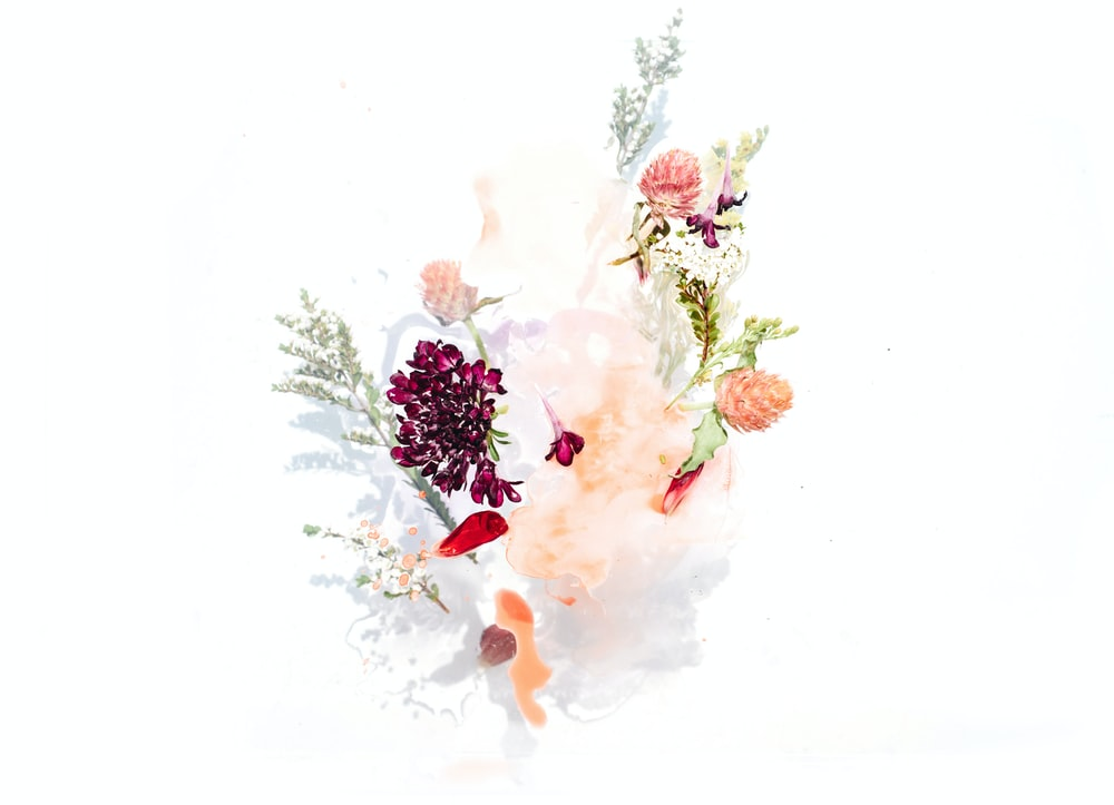 Bouquet Of Assorted Flowers Vector Graphic Photo Free