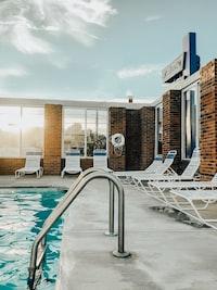stainless steel pool ladder