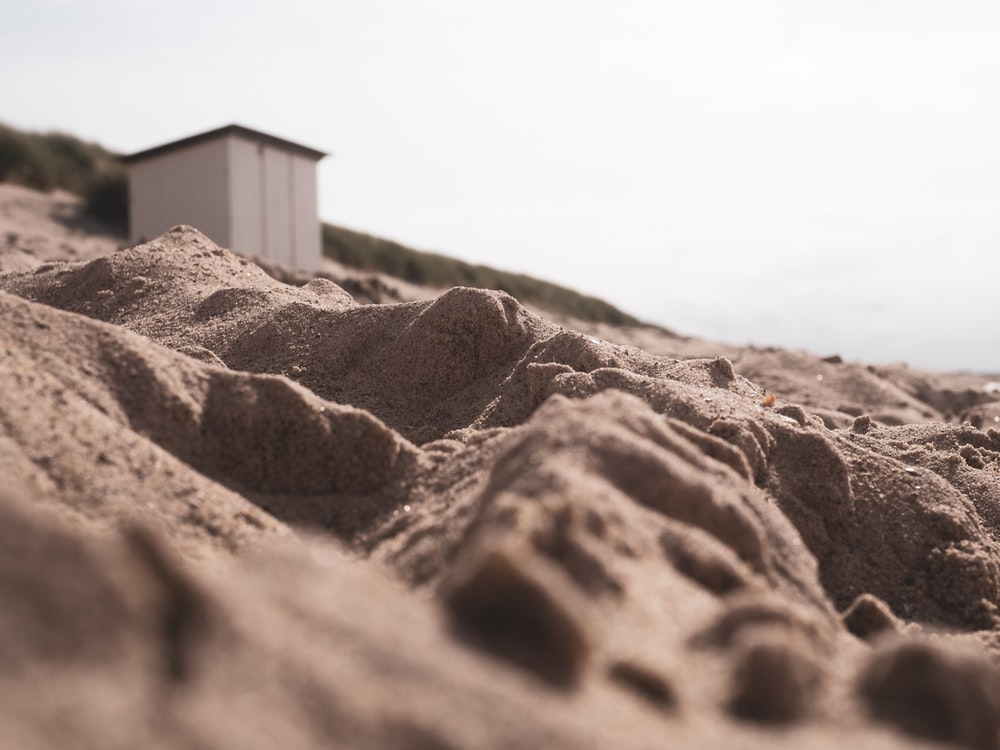selective focus photography of sands