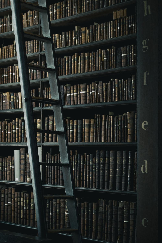 library shelf near black wooden ladder