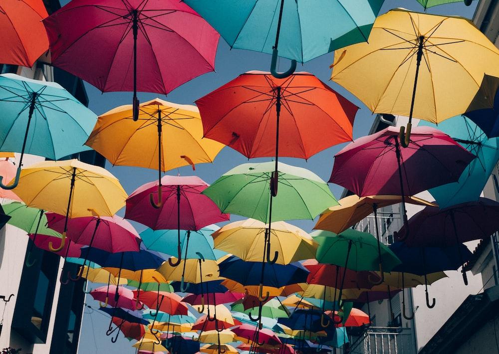 assorted umbrella lot during daytime