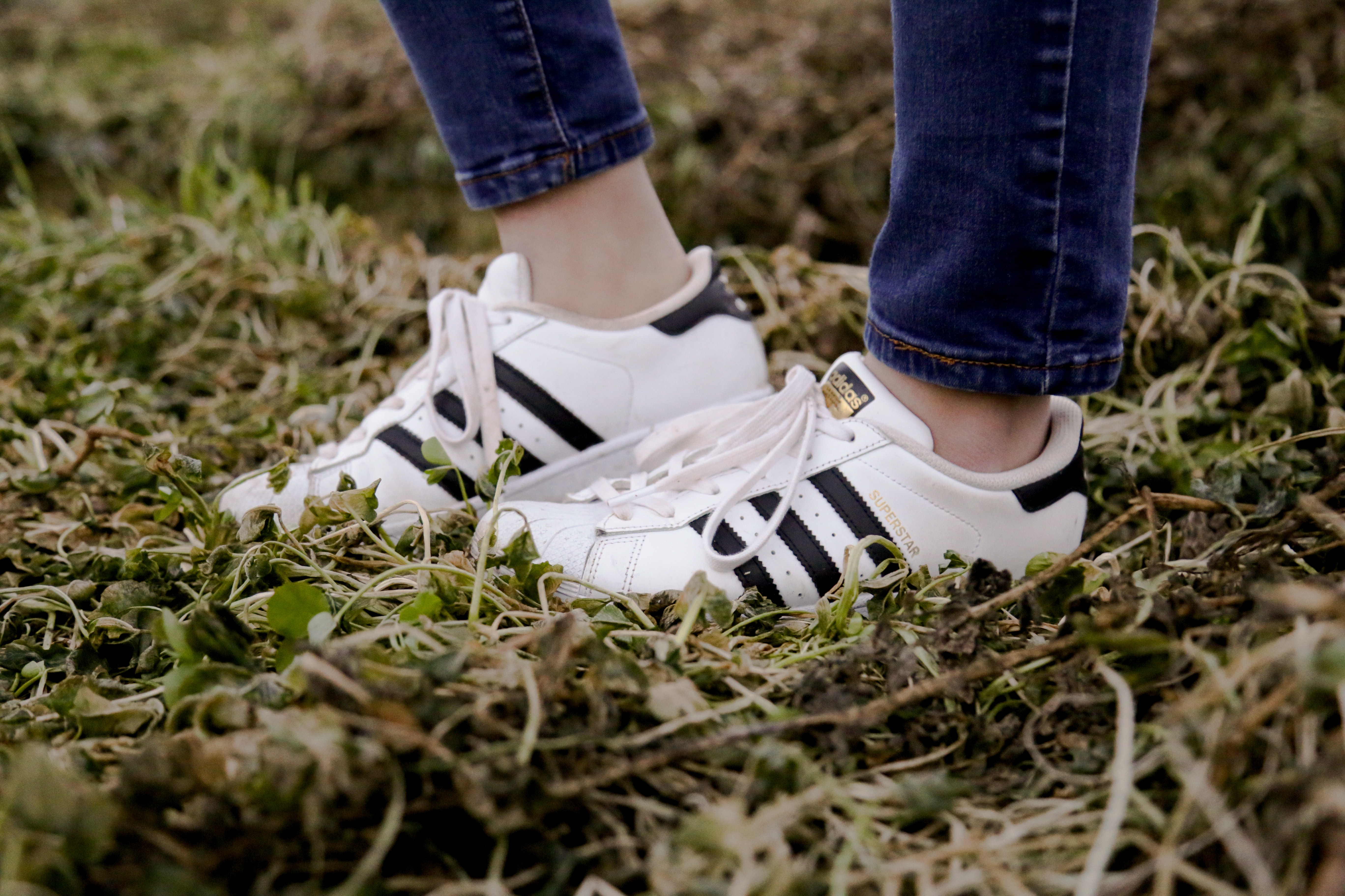 woman wearing white Adidas Superstar shoes